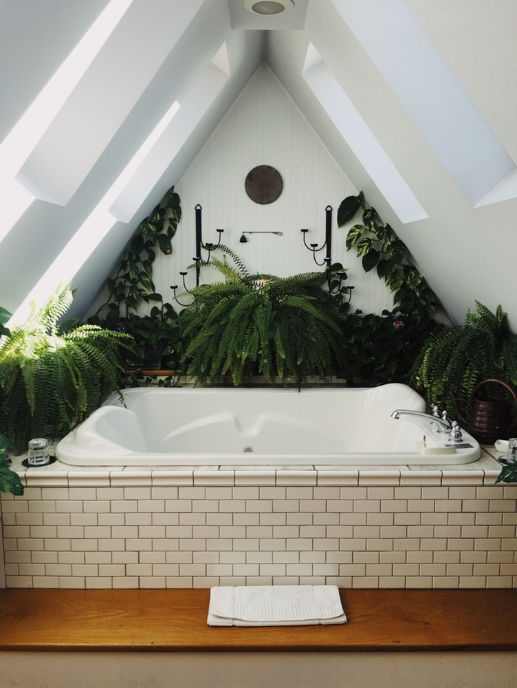 A white bathtub surrounded by lush green plants